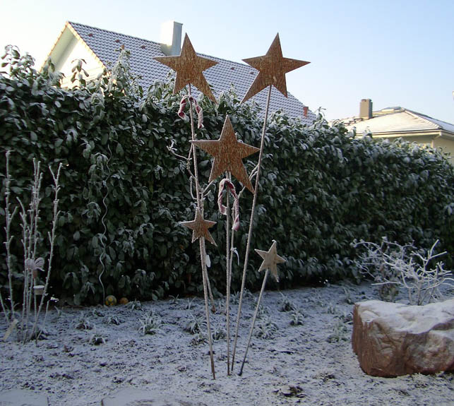 Sterne_im_Winter